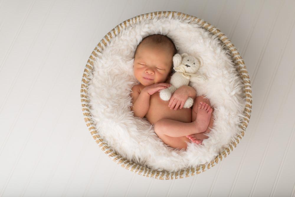 Newborn Photography in basket